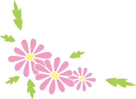 Daisy - Pink