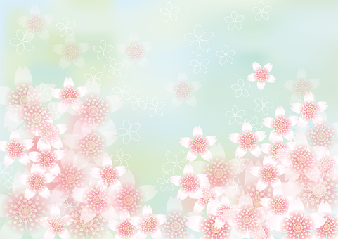벚꽃의 꽃 118