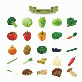 Illustration of real vegetables
