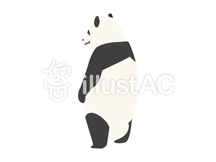 動物-パンダ-背中(背景なし)のイラスト
