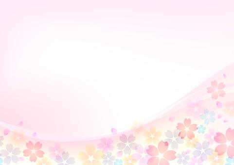 Cherry blossoms 139
