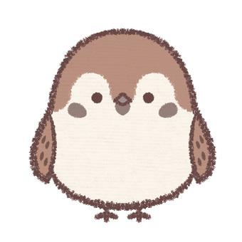Icon sparrow