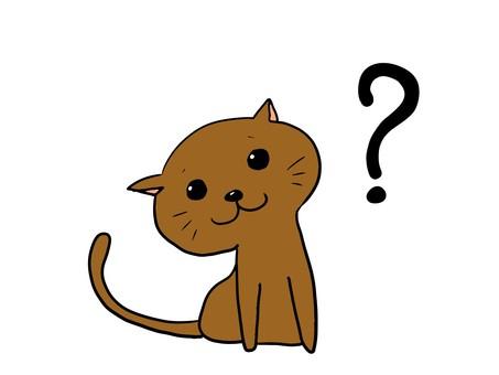 Cat Question