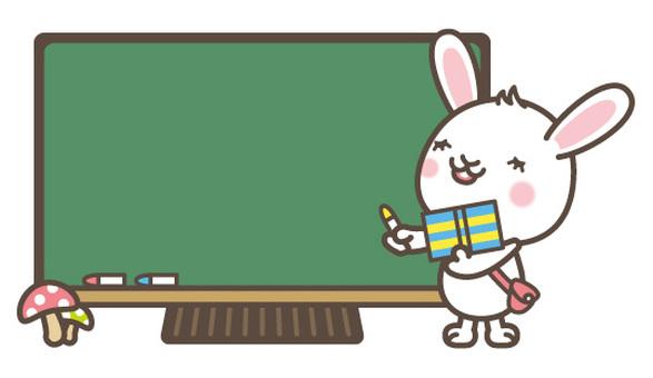 Study rabbit