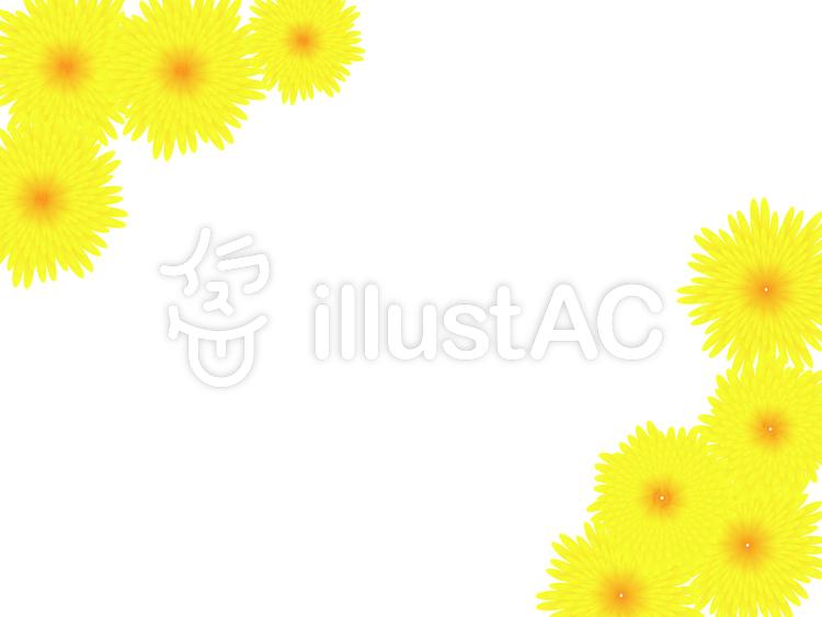 菊のフレームのイラスト