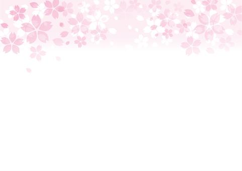 벚꽃 배경 상단