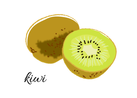 Kiwi hand drawn touch