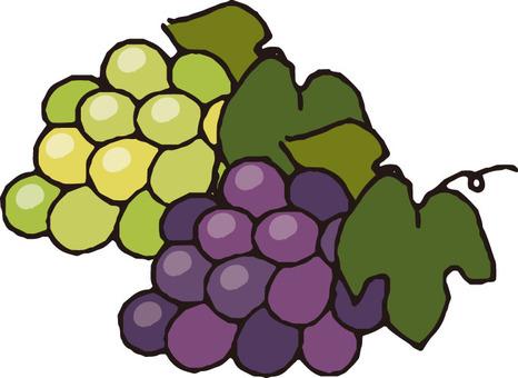 Fruit (grape · 2 kinds)