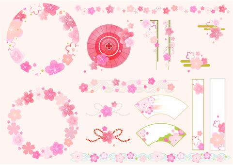 벚꽃 다양한 01