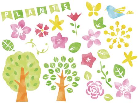 Scandinavian-style plant material set watercolor paint