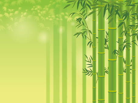 Bamboo with bamboo leaves _ Bamboo forest background 01
