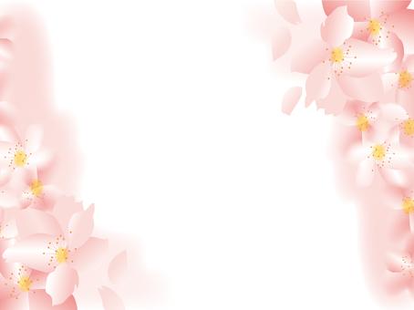 Spring, Tint block, Sakura, Flower