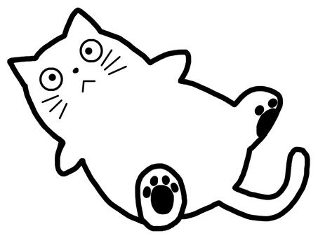 Cat animal color line drawing monotone