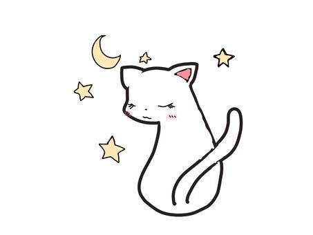 White Cat Night Moon Star