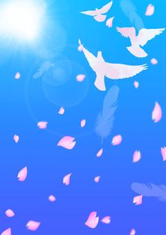 비둘기가 날고 푸른 하늘 벚꽃 a5
