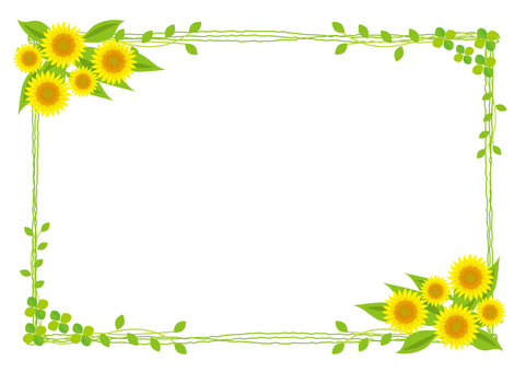 Sunflower and green frame