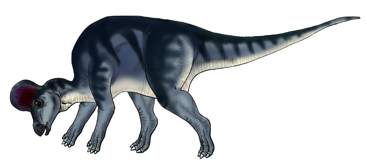Herb drinking water dinosaur 2