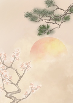 Mei Song