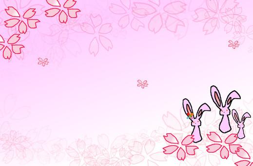 Rabbit frame 6