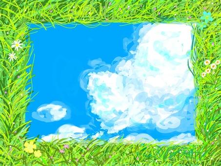 Grassland, blue sky and wild flowers