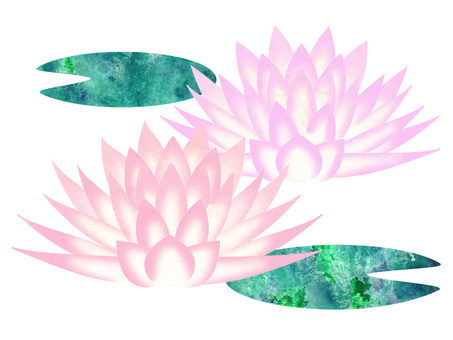 Water lily _ rough 01
