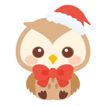 Sissy Owl oku ♡ Christmas