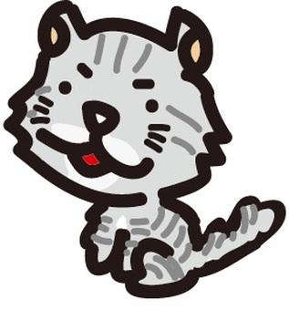 American curl (cat)