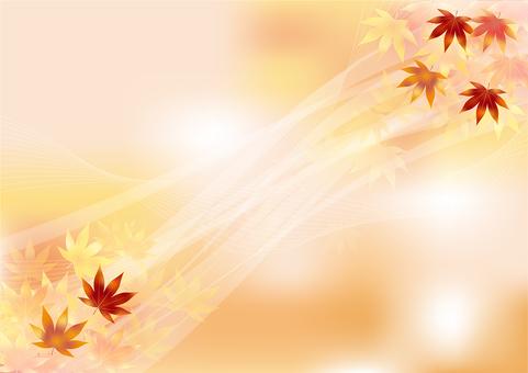 Autumn leaves 312