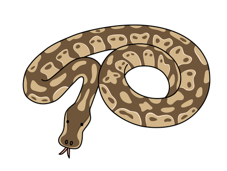 Python snake (Python)