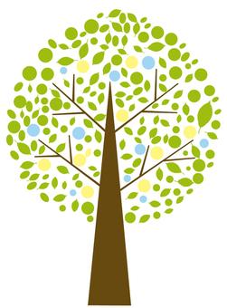 초여름의 나무