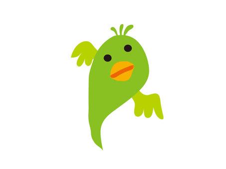 Loose parrot 18