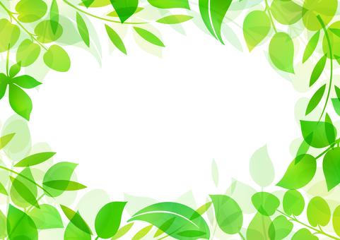 Fresh green material 156