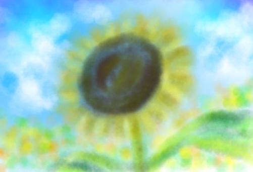 하늘을 날고 싶은 해바라기 (엽서)