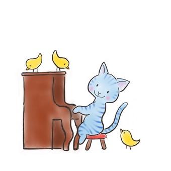 Piano cat 34
