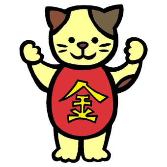 Cat wearing color