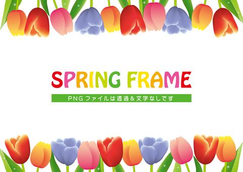 화려한 봄 튤립 프레임
