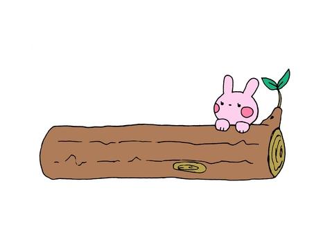 Usagi and log 1 of 2