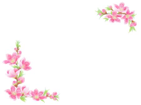 복숭아 꽃 10