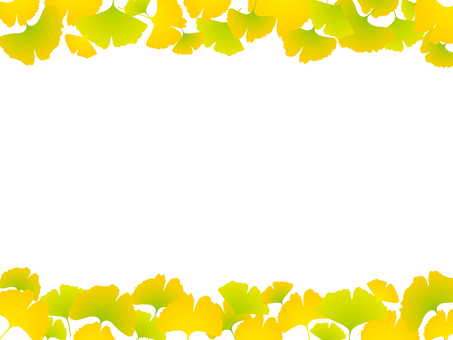 Upper and lower frame of ginkgo