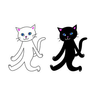 White cat and black cat walking with two legs
