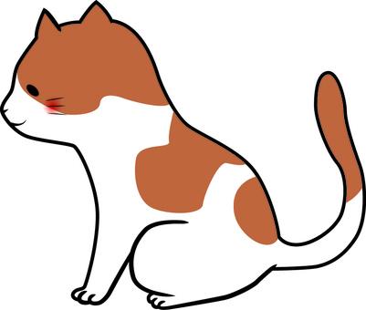고양이 (갈색 · 얼룩)
