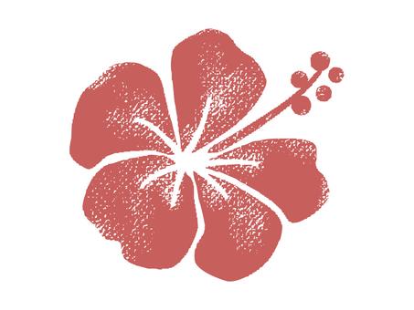Hibiscus 001