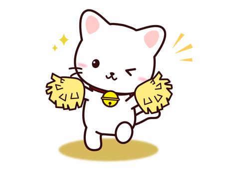 Cat (support)