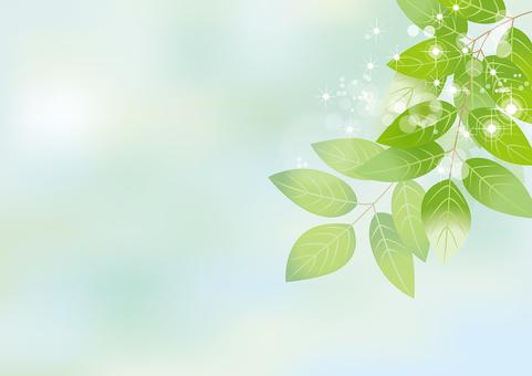 Glittering leaves & sky 8