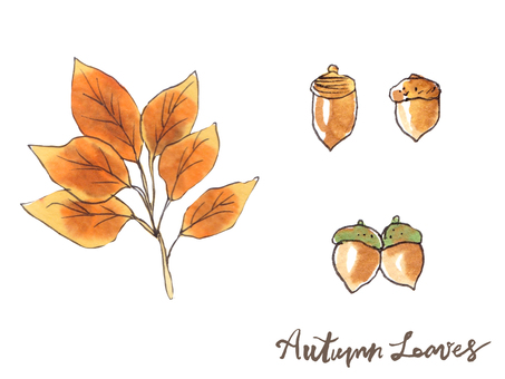 가을 나뭇잎 09