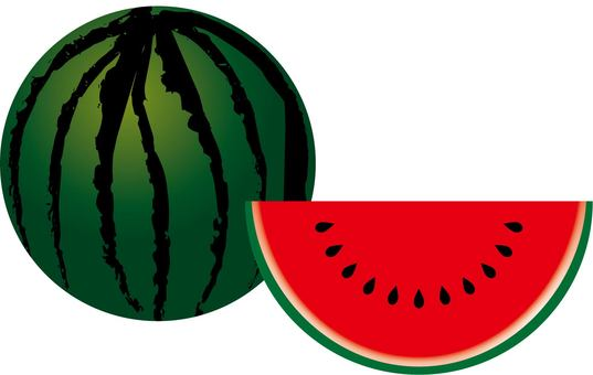 Watermelon Type F ~