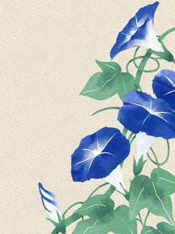 Morning glory watercolor material / blue a