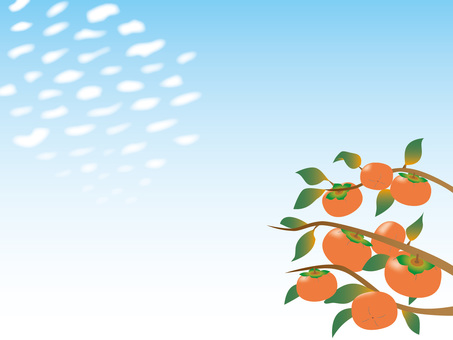 Scaly clouds and persimmon - 02