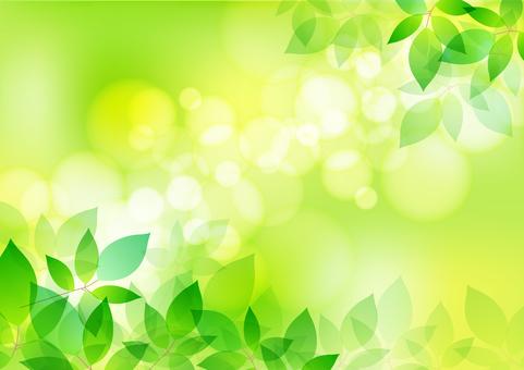 Fresh green material 167