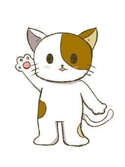 손을 드는 고양이